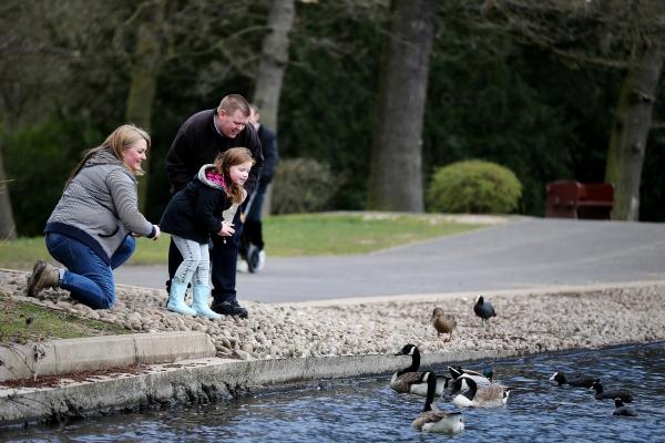 Family by pond feeding ducks